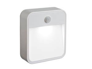 motion sensor security light